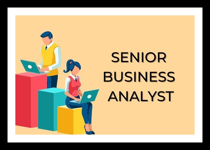 Looking for a Senior Business Analyst Limerick
